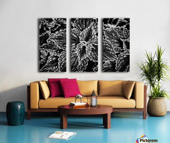 Bold Leaves Split Canvas print