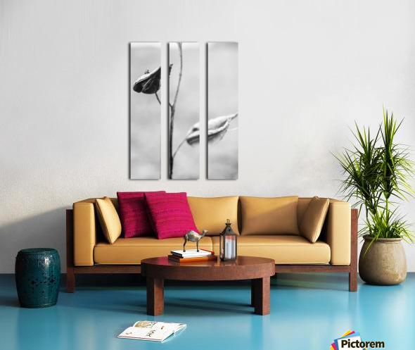 Just Two Split Canvas print