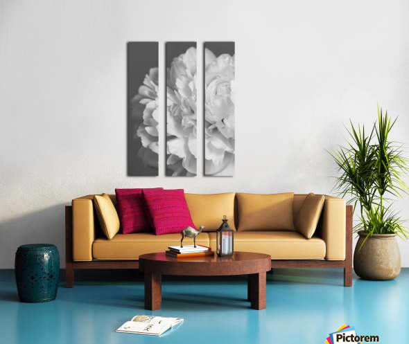 Peony in Black & White Split Canvas print