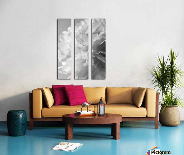 Softness in Black & White Split Canvas print