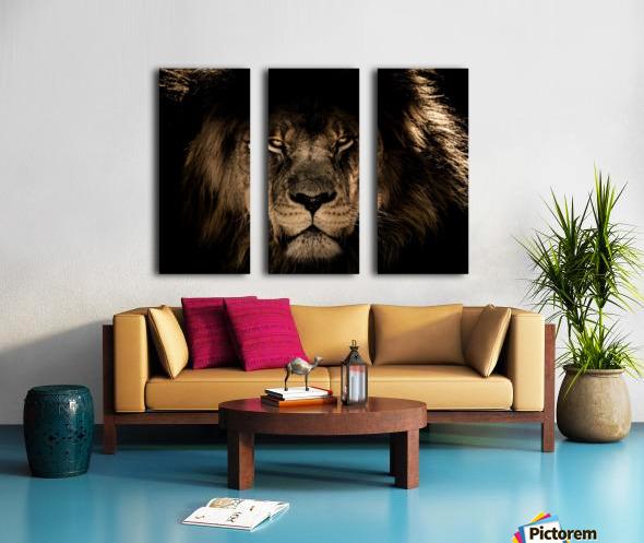african lion wildcat mane closeup Split Canvas print