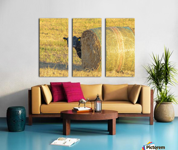 Hay.You Looking For Me Split Canvas print