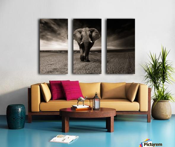 elephant animal africa safari Split Canvas print