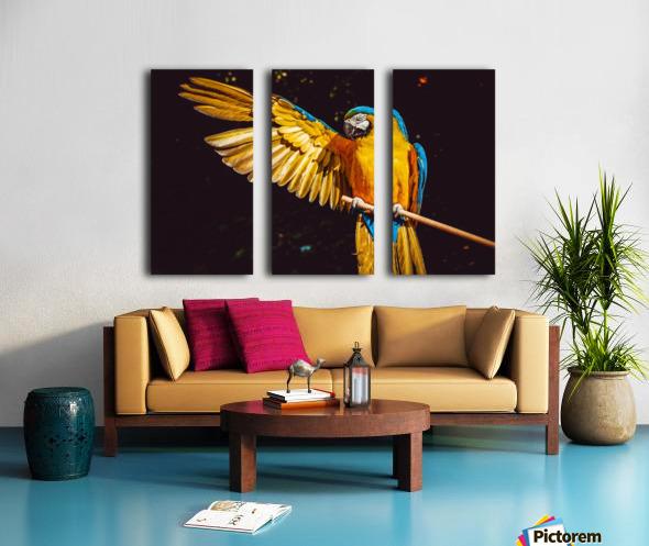 ara parrot yellow macaw bird Split Canvas print