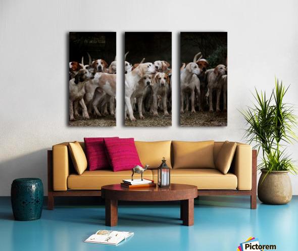 dog herd canine animal pet hounds Split Canvas print