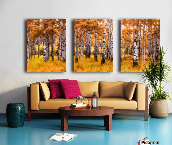 Birch Trees Autumn  Split Canvas print
