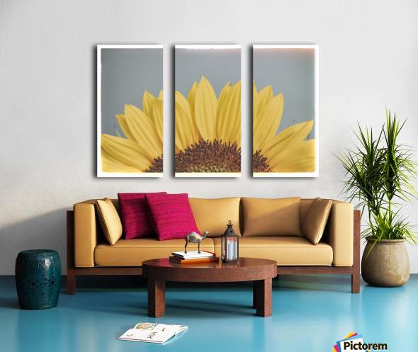 Sun Is Shining Split Canvas print