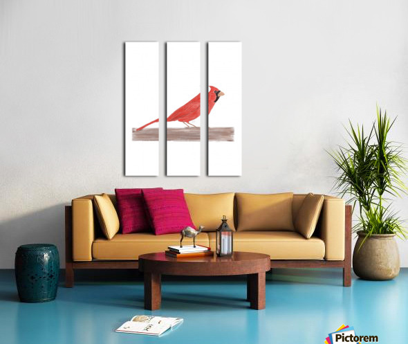 Cardinal Split Canvas print