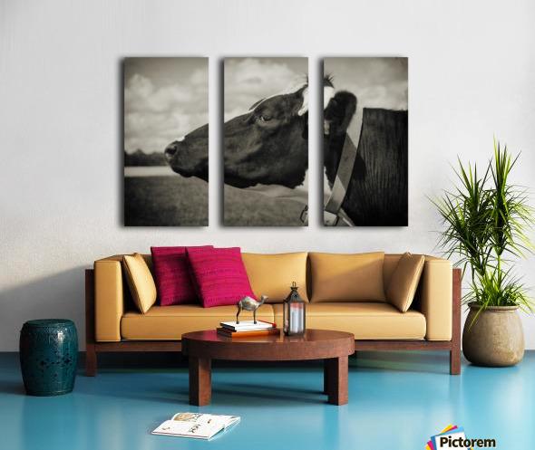 Portrait of a Cow Split Canvas print