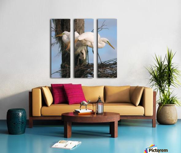 Mating Season - Great Egrets I Split Canvas print