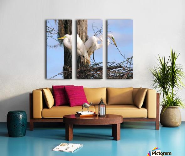 Mating Season - Great Egrets II Split Canvas print