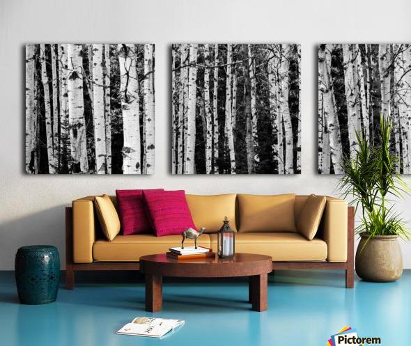Birch Tree Forest Split Canvas print
