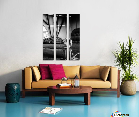 Reverse Buggy Seat Split Canvas print
