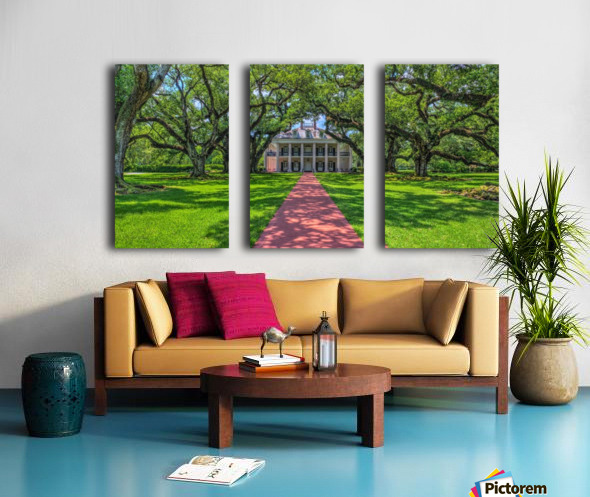 Oak Alley Plantation - HDR Split Canvas print