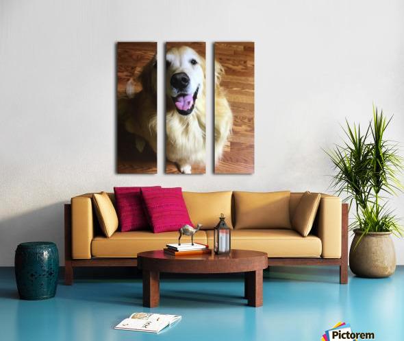 Happy Golden Split Canvas print