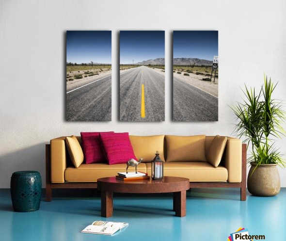Arizona Road Split Canvas print