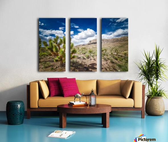 Arizona Desert  Split Canvas print