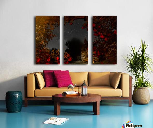 Roses and Stars  Split Canvas print