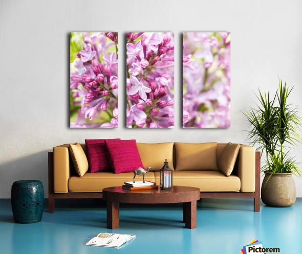 Lilacs Split Canvas print