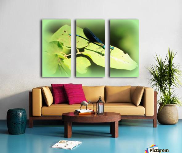 libellule Split Canvas print