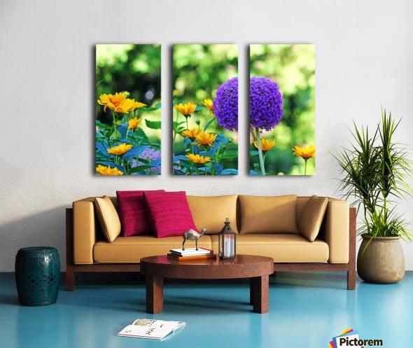 Allium And Wild Sunflowers Split Canvas print