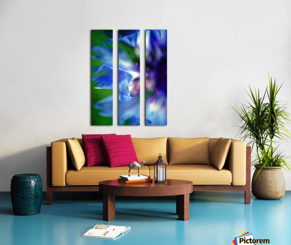 Abstract Pop Color Flower Photography 16 Split Canvas print