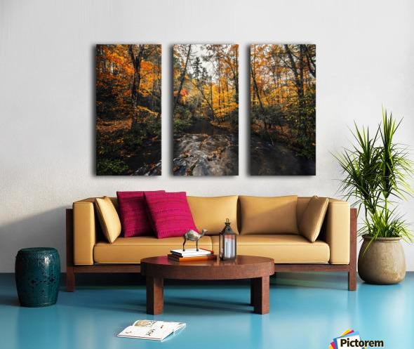Smokey Mountain River Split Canvas print