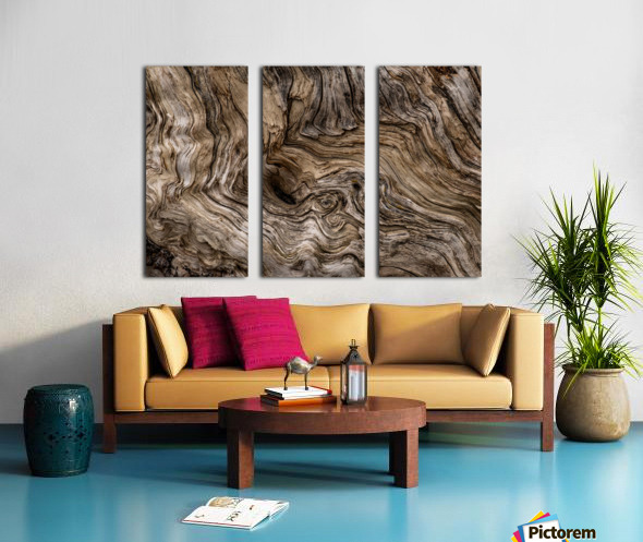 Banff Petrified Wood Split Canvas print