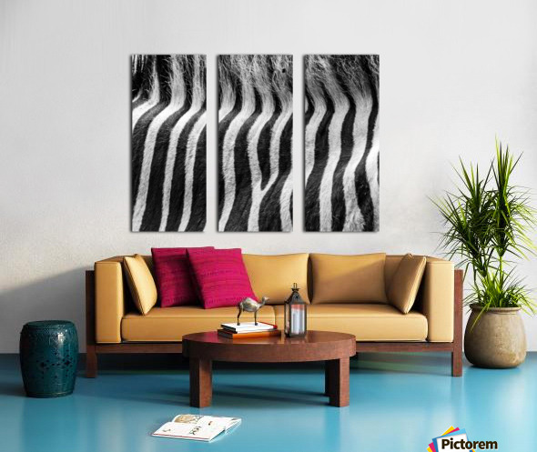 Zebra Details Split Canvas print