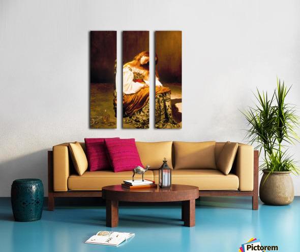 Tilda Swinton Split Canvas print