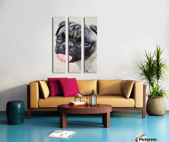 Pug Joker Split Canvas print