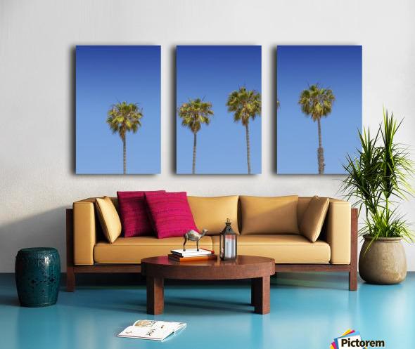 Lovely Palm Trees | Panorama Split Canvas print