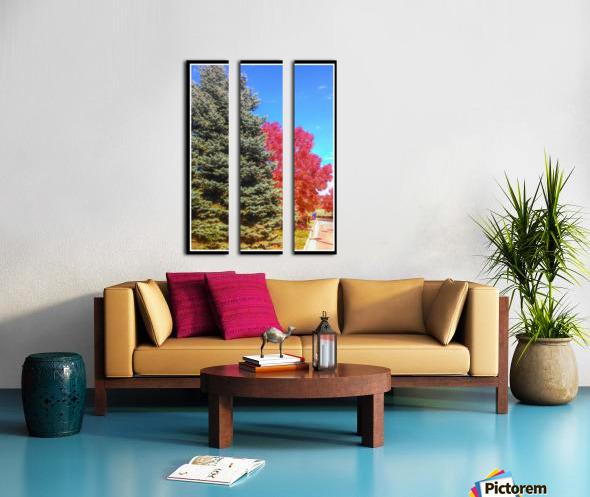 Out-side Split Canvas print