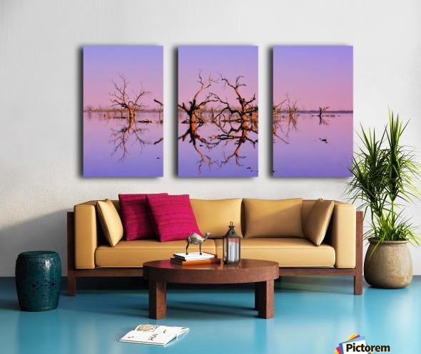 Twin Reflections - Pamamaroo Lake Split Canvas print