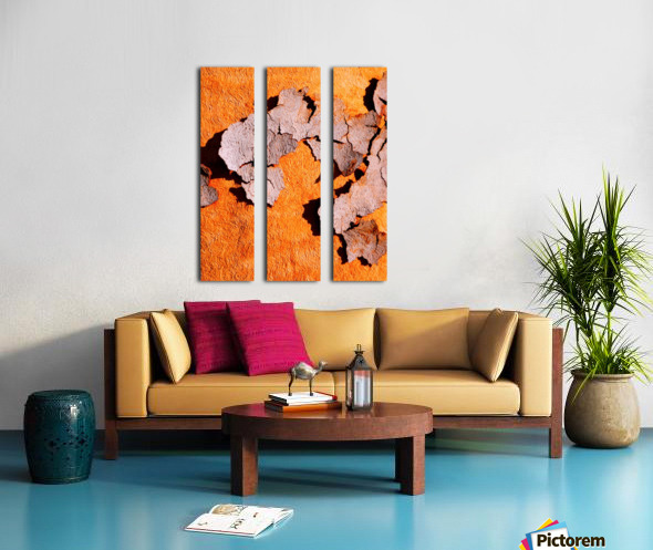 Salmon Bark Peeling 2 Split Canvas print