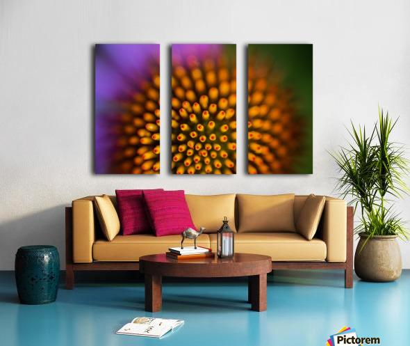 Flower Abstract Split Canvas print