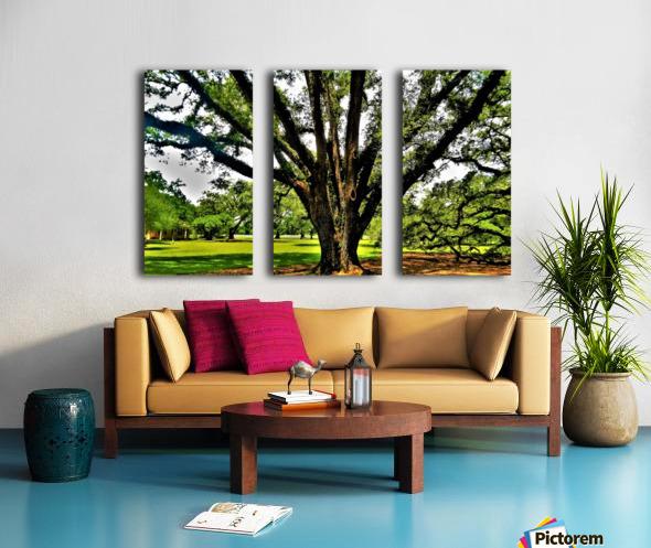 Big Split Canvas print