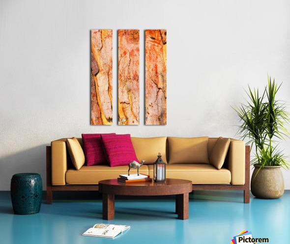 Eucalyptus Bark And Patterns Split Canvas print