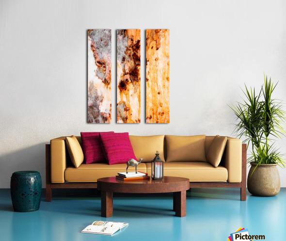 Ghost Gum Bark - 4 Split Canvas print