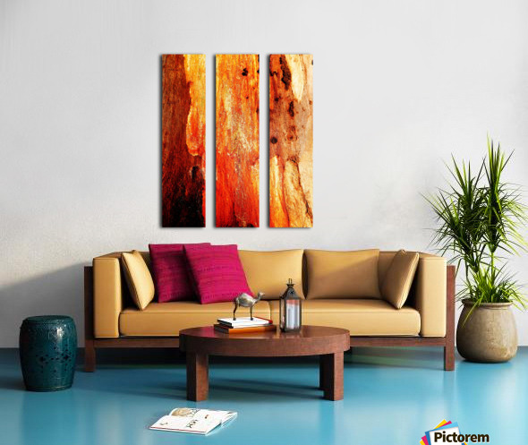 Murray Gum Tree Bark 2 Split Canvas print