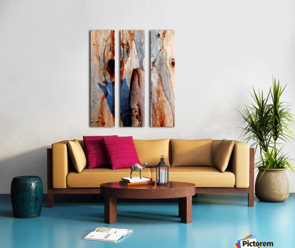 Murray Gum Tree Bark 5 Split Canvas print