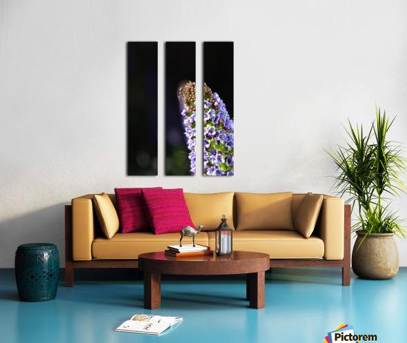 Veronica Flower Delight Split Canvas print