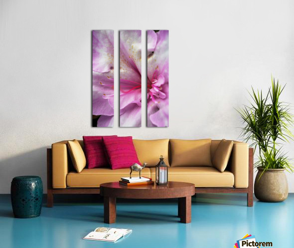 Azaleas Pink Heart Split Canvas print