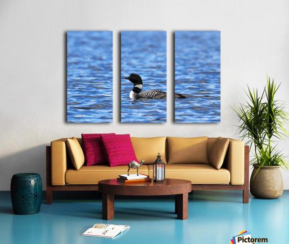 Spirit Of Northern Lakes Split Canvas print