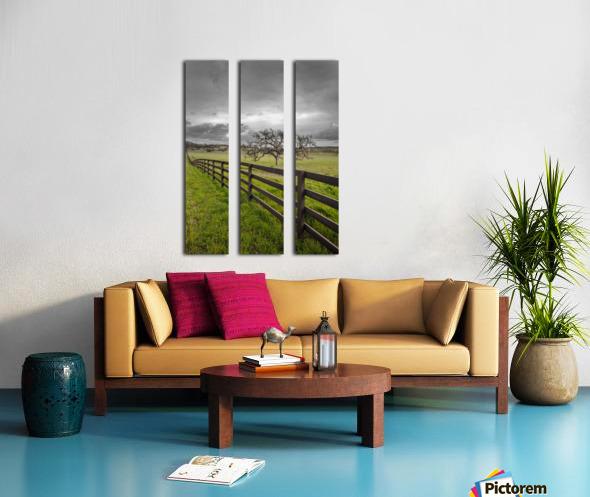 Melancholic Split Canvas print