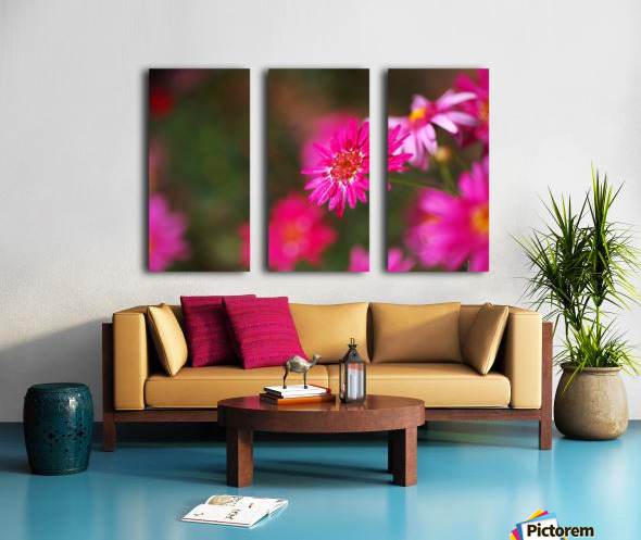 Hot Pink Small Daisy Split Canvas print