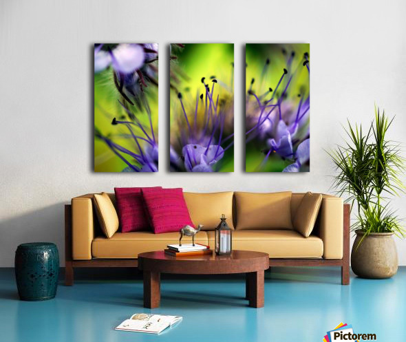 Abstract Pop Color Flower Photography 17 Split Canvas print