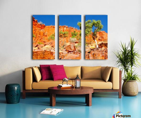 Ormiston Gorge Landscape Split Canvas print