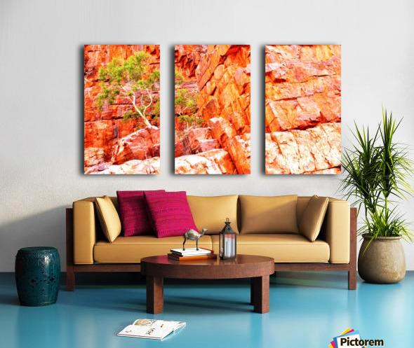 Pink Delight - Ormiston Gorge Split Canvas print