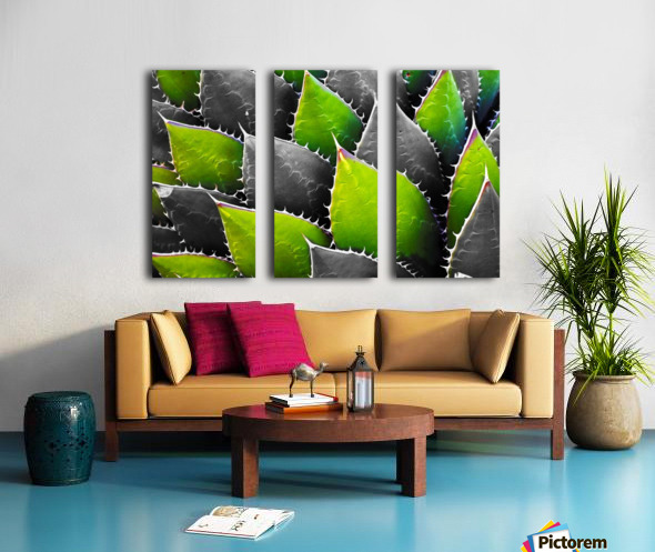 Thorny Split Canvas print
